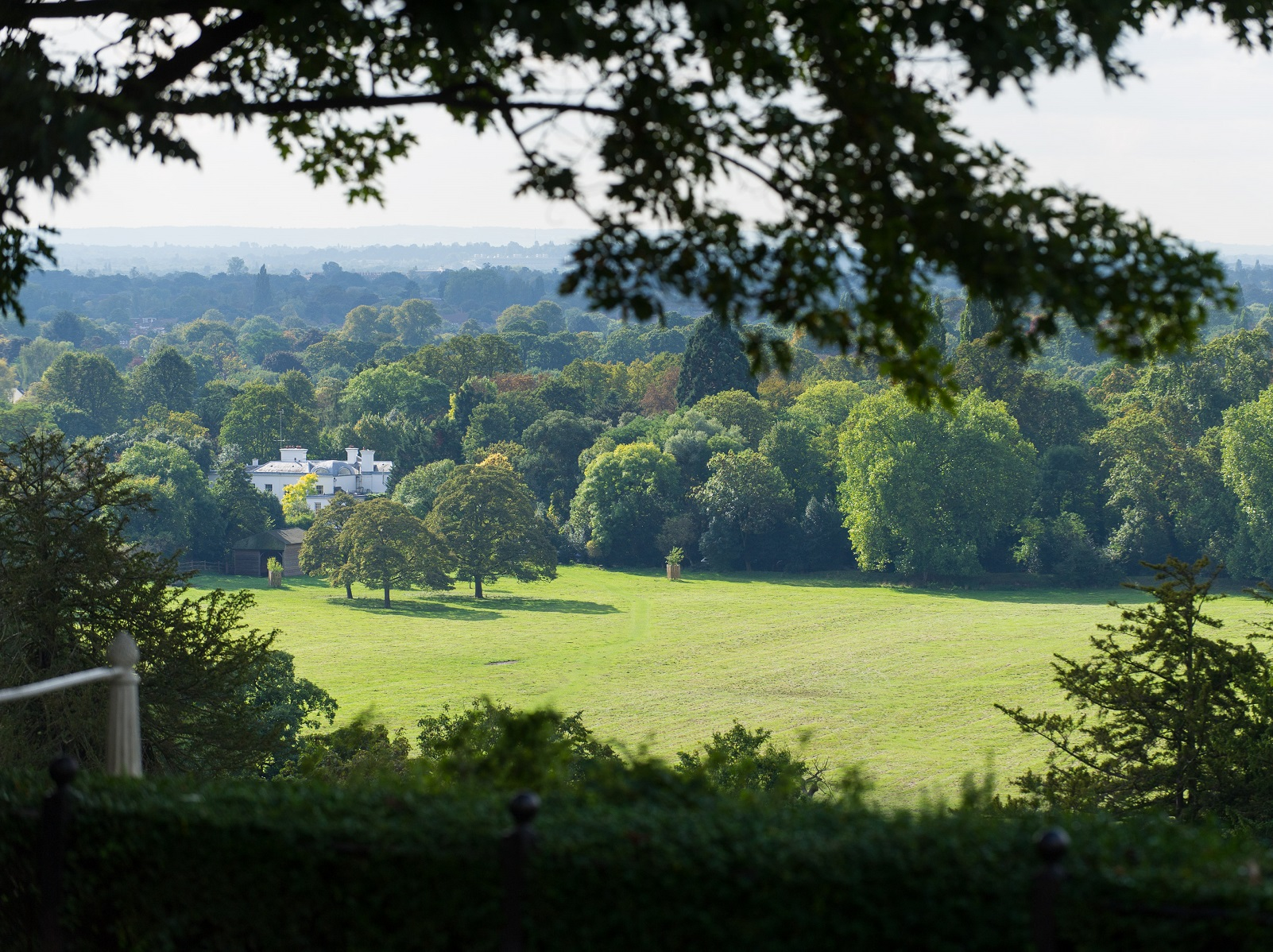 Picture of a house hidden away in Richmond park