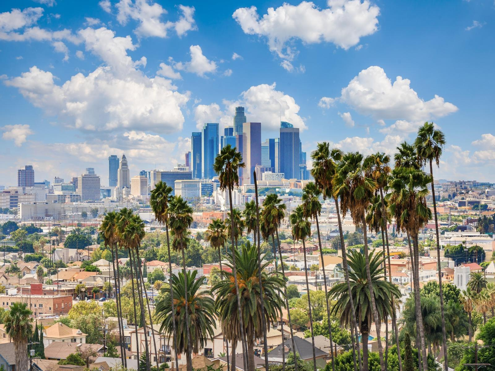 Photo of skyscrapers and palm trees in LA Los Angeles