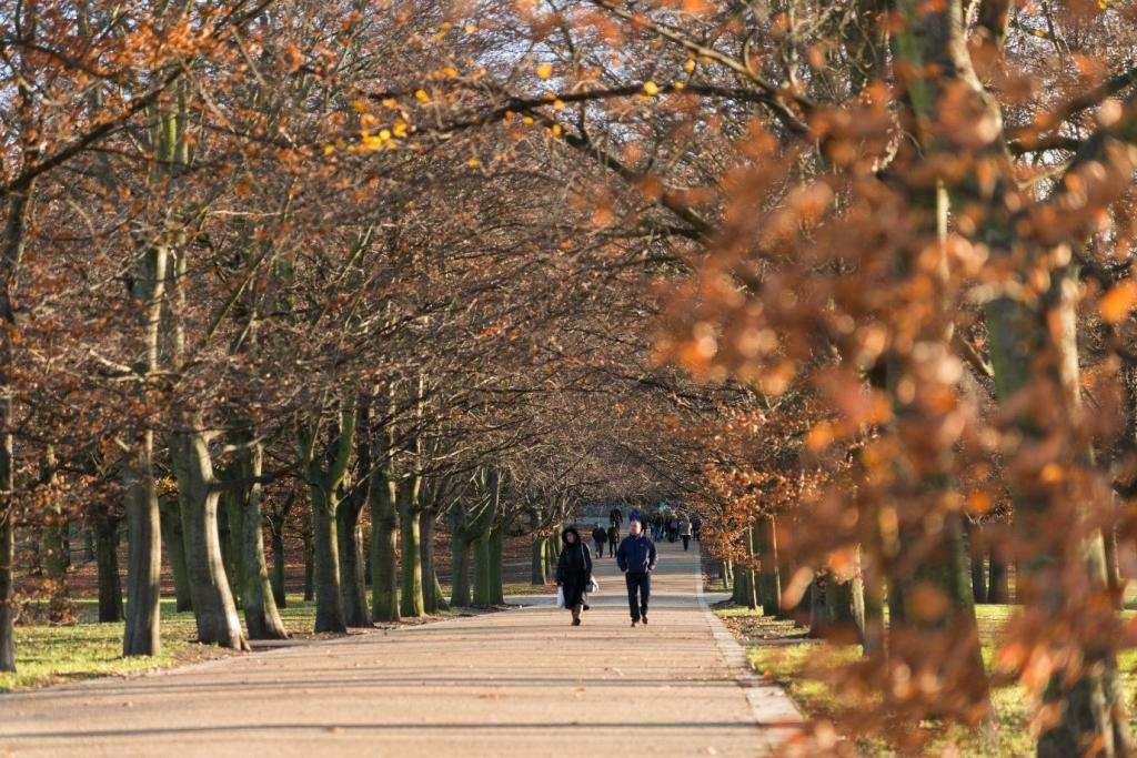 Greenwich Park | The best parks in London